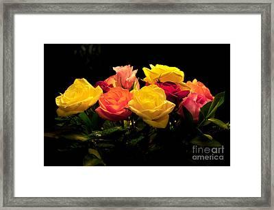 Roses Framed Print by Stuart Mcdaniel