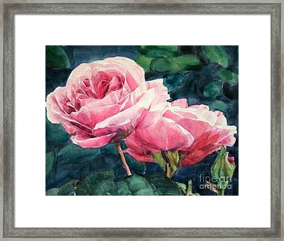 Watercolor Of Two Luscious Pink Roses Framed Print