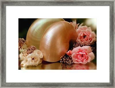 Roses With Sea Shell Framed Print by Li   van Saathoff