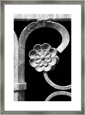 Rosette - Wrought Iron  Framed Print by Nikolyn McDonald