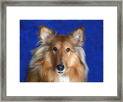 Framed Print featuring the photograph Rosie by Evelyn Tambour