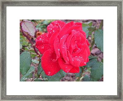 Rosie Red Framed Print