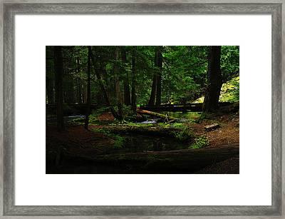 Ross Creek Montana Framed Print by Jeff Swan