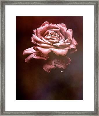 Rosy Fog Framed Print