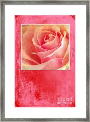 Rosy Framed Print by Randi Grace Nilsberg