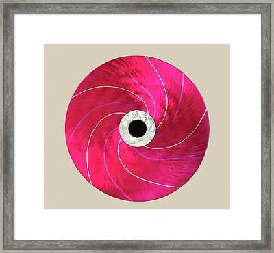 Rotation Framed Print by Rick Roth