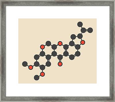Rotenone Insecticide Molecule Framed Print by Molekuul