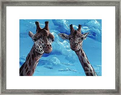 Rothschild Giraffe Framed Print