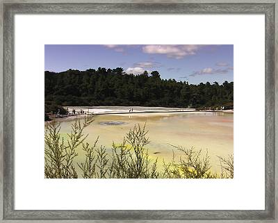 Rotorua New Zealand 4 Framed Print by Mariusz Kula