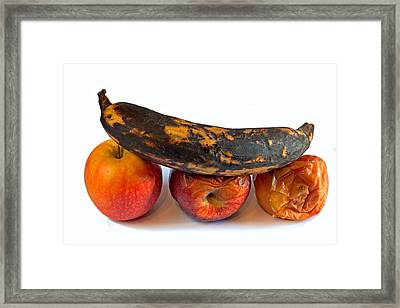 Rotten Fruit Framed Print by Ken Biggs