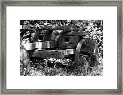 Rotten Framed Print by Linda Provan