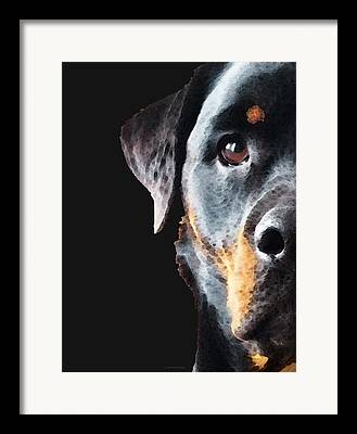 Rottweiler Puppy Framed Prints