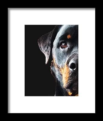 Rottweiler Framed Prints