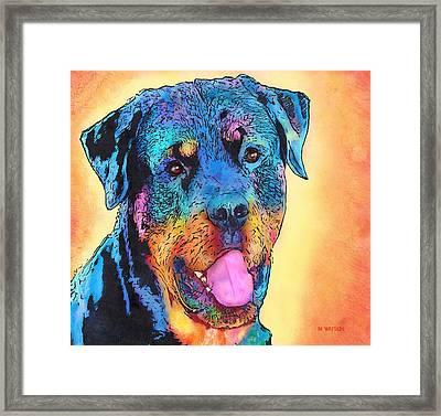 Rottweiler Framed Print by Marlene Watson