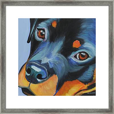 Rottweiler Framed Print by Melissa Smith