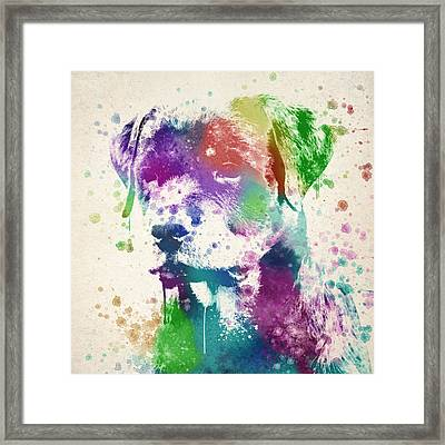 Rottweiler Splash Framed Print