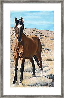 Rough And Ready Framed Print by Jack Atkins