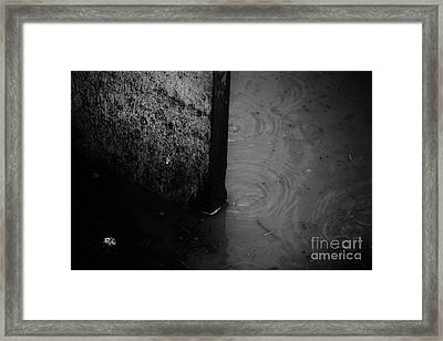 Rough Framed Print by Jessica Shelton