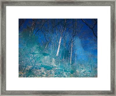 Round Spring II Framed Print