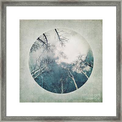 round treetops III Framed Print