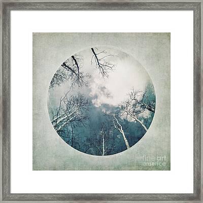 round treetops III Framed Print by Priska Wettstein