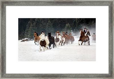 Roundup Framed Print by Jack Bell