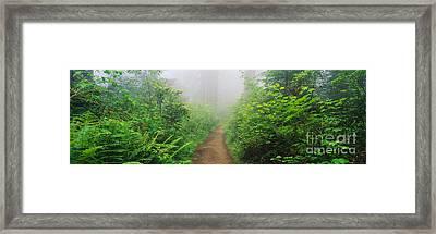 Route 1 In Northern California Framed Print by Joseph Sohm ChromoSohm Media Inc