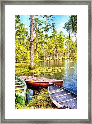 Row Boats In A Cypress Swamp Framed Print by Dan Carmichael