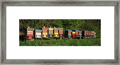 Row Of Beehives, Switzerland Framed Print