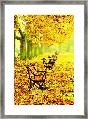 Row Of Red Benches In The Park Framed Print by Jaroslaw Grudzinski