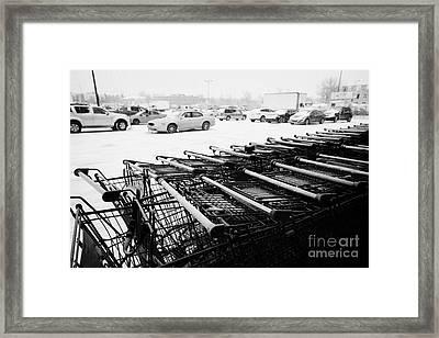 row of shopping carts with snow covered supermarket parking lot Saskatoon Saskatchewan Canada Framed Print