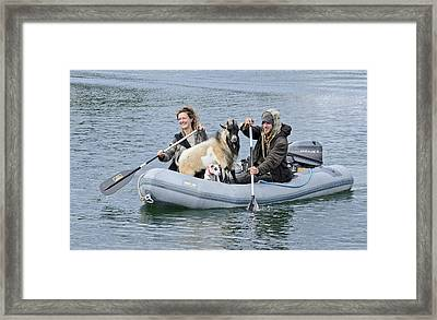 Row Your Goat Framed Print