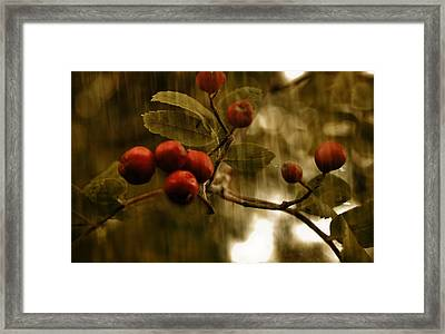 Framed Print featuring the mixed media  Berry Nice by Fine Art By Andrew David