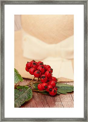 Rowan Berries Framed Print
