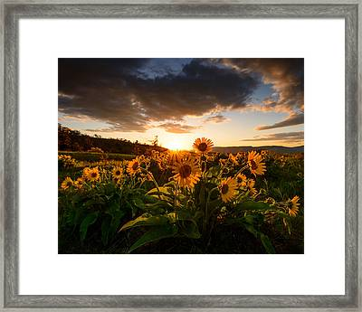 Rowena Crest Sunset Framed Print by Dan Mihai