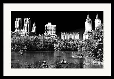 Rowing In Central Park Framed Prints