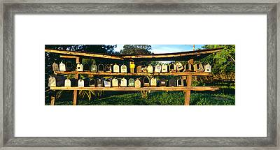 Rows Of Mailboxes Along Road To Hana Framed Print
