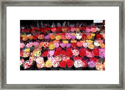 Rows Of Roses Framed Print by Amy Cicconi