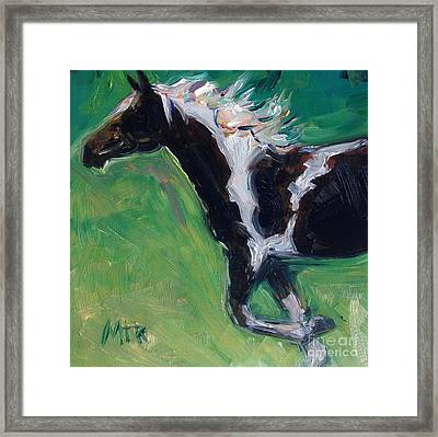 Paint Horse Oil Painting Roxy Framed Print by Maria's Watercolor