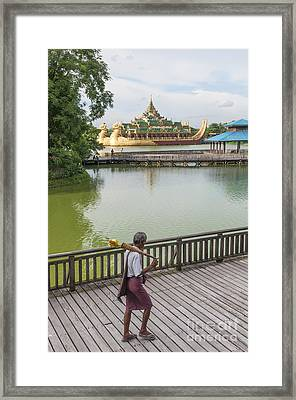 Royal Barge In Yangon Myanmar  Framed Print
