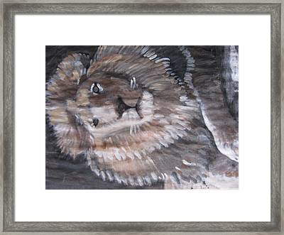 Framed Print featuring the painting Royal Lion by Vikram Singh