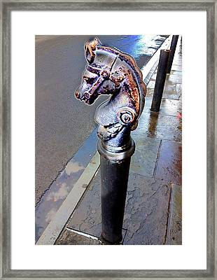 Royal Stroll Framed Print