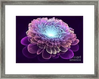 Royal Velvet Framed Print