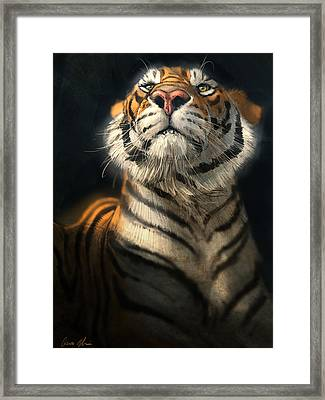 Royalty Framed Print by Aaron Blaise
