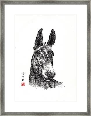 Royalty Framed Print by Bill Searle
