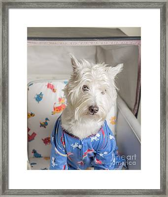 Rubber Baby Buggy Bumpers Framed Print by Edward Fielding