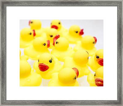 Rubber Ducky You Are The One Framed Print by Edward Fielding