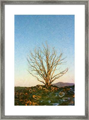 Rubber Tree Framed Print by Spyder Webb