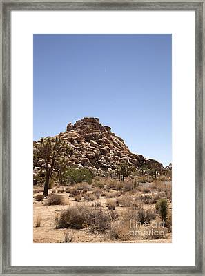 Rubble Framed Print by Amanda Barcon