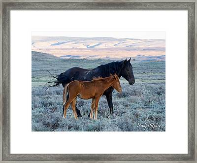 Ruby And Coal Of Sand Wash Basin Framed Print